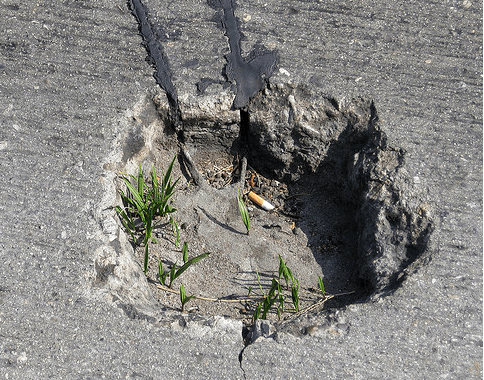 I have no idea if this pothole on Sunset Boulevard was ever filled, this phot is from 20 months ago.  But you know what's a really bad sign?  When your potholes are growing grass.  Photo:##http://www.flickr.com/photos/sreed99342/3532530951/##SReed99342/Flickr##