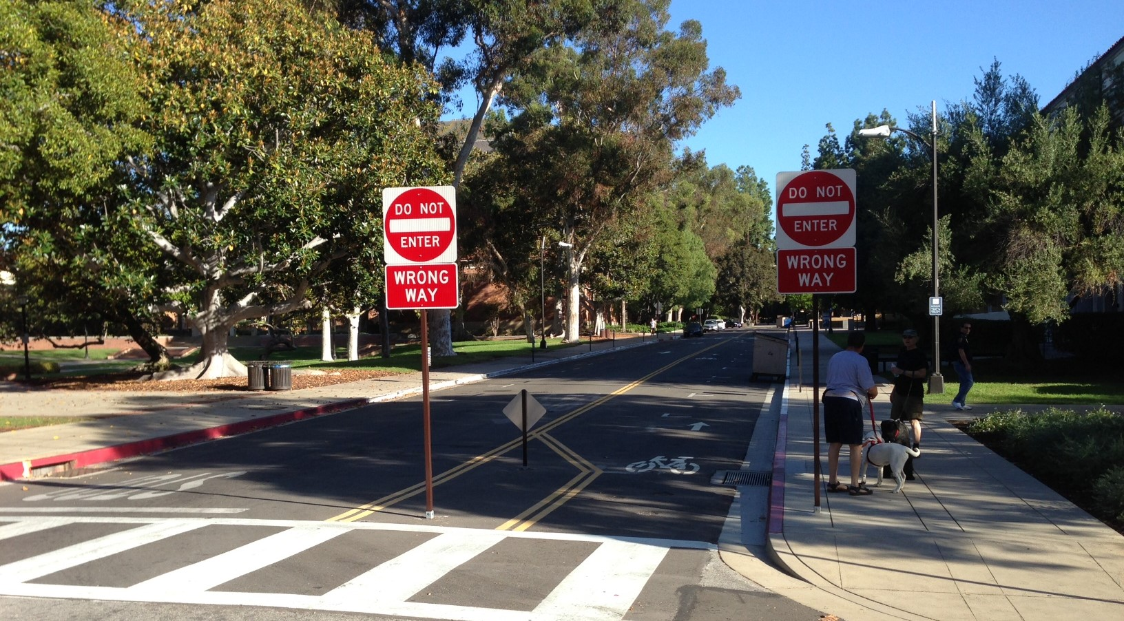 Eyes On the Street: New Counterflow Bike Lanes at UCLA