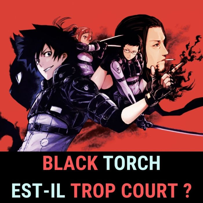 REDIFF : Black Torch : ce manga est-il trop court ? – La 5e de Couv' – #5DC – Saison 4 épisode 28