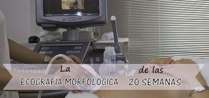La ecografía morfológica de las 20 semanas