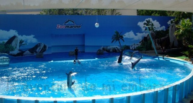 photo delfines-zomarine_zpsxl26guaf.jpg