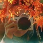東公園(愛知県岡崎市)の紅葉が凄く綺麗でした!2014!