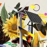 Cambiamenti climatici: Cause, dati aggiornati al 2020 e sostenibilità