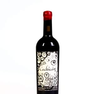 Cachicán DO Bierzo Coupage Vino Tinto