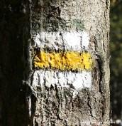 Markierung weiß gelb weiß