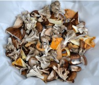 Wild-Mushrooms-in-Parchment-sliced