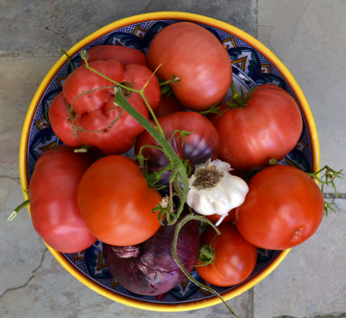Freshly picked garden tomatoes, garlic & red onion for Panzanella with Tuna | labellasorella.com
