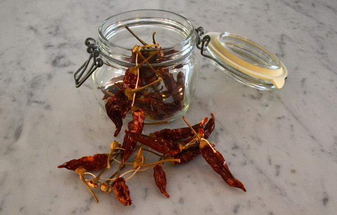 Calabrian chili peppers | labellasorella.com