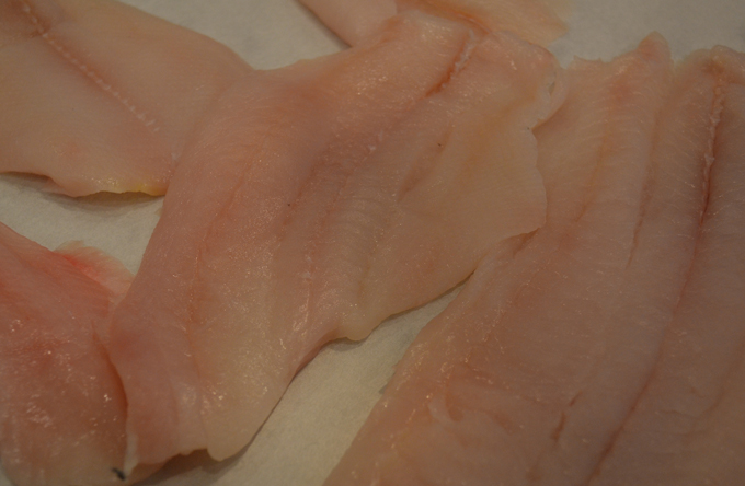 Fresh fillet of sole | labellasorella.com