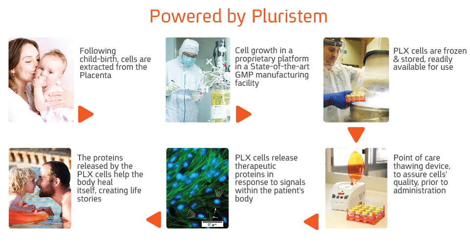 Image result for pluristem