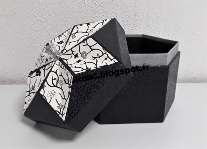 Boite Origami revisitée 46-Isabelle V