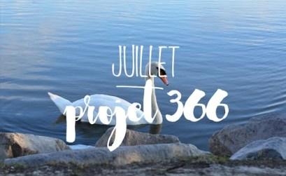 projet 366