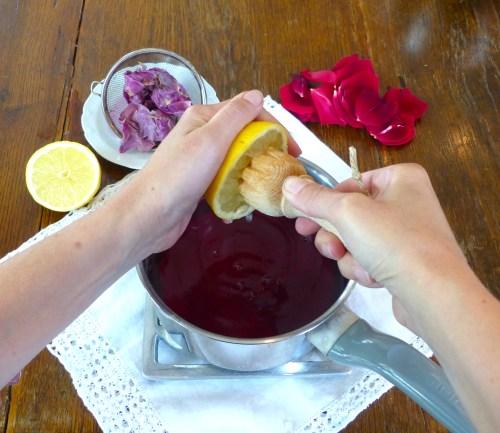 cheesecake-a-la-rose-5.jpg