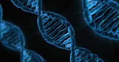 Científico dice que edición de ADN de bebés podría hacerlas más inteligentes