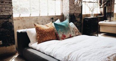 Airbnb: sustituto perfect tras el cierre de cabañas por el  coronavirus
