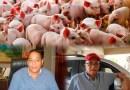 Experimentados productores estiman peste africana no llegaría al 73% población porcina