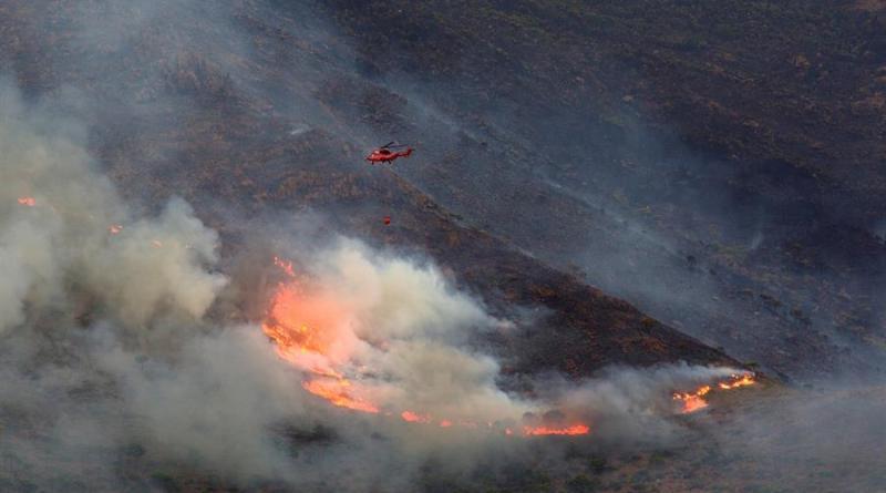 Controlado el incendio en el sur de España que ha arrasado 9.670 hectáreas