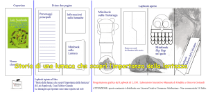 Lapbook Lumaca che imparò la lentezza bottone