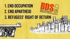 BDS Demands1