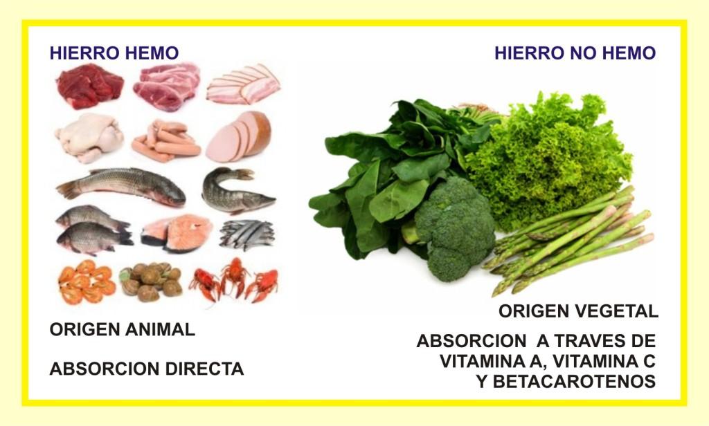 Sabes c mo puedes absorber mejor ciertos nutrientes - Alimentos que contengan hierro para embarazadas ...