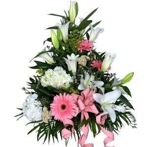 centro-de-flores-nacimiento-luz