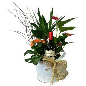 centro de flores y plantas san jose