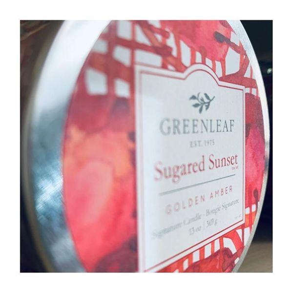 Sugared Sunset GreenLeaf