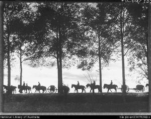 Horses Hurley
