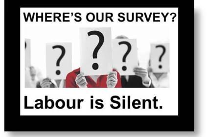 LP survey2