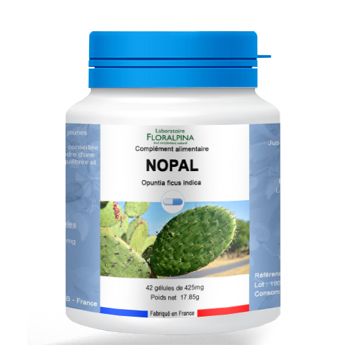 42-gelules-de-nopal-1