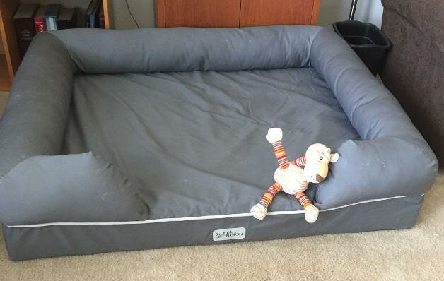 The Best bed for a Labradoodle in your house
