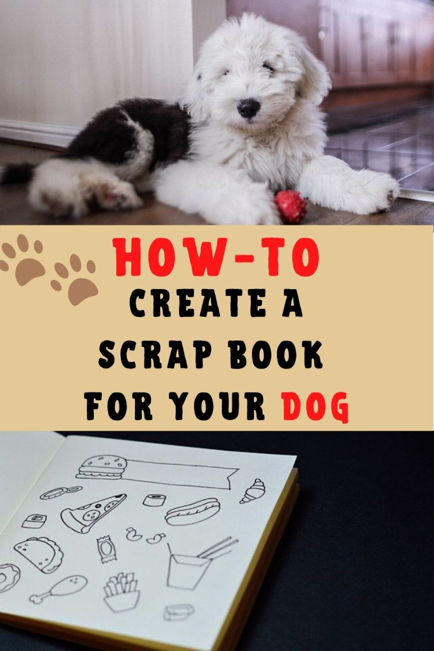 How to create a scrap book for your dog