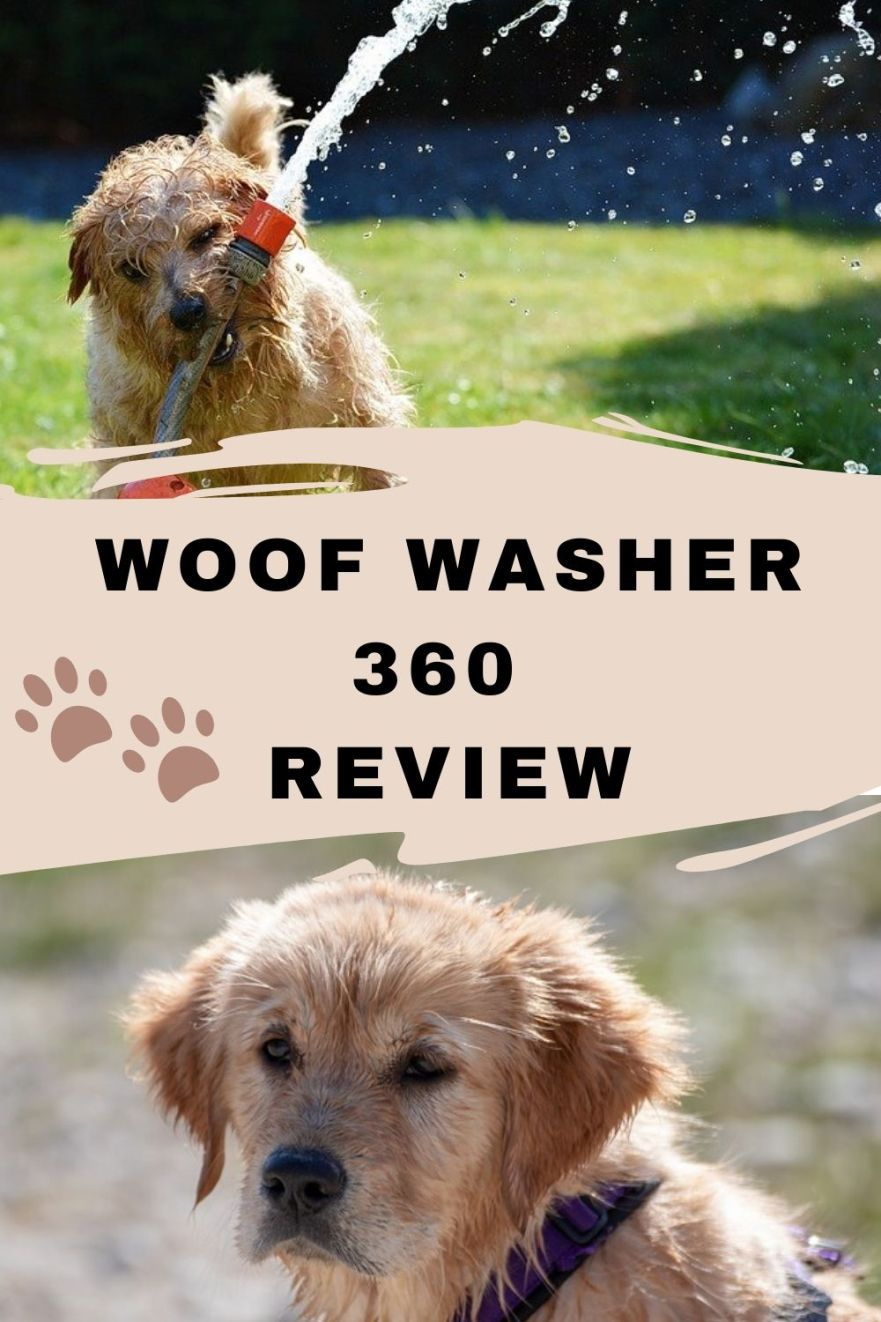 woof washer 360 review