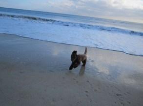 MIKKA FLORIDE 16 DEC. 2012 018