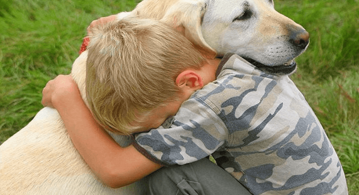 yellow-labrador-retriever-and-litle-boy-hugging