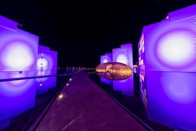 Viceroy B Side Night - VII Edición Los Cabos International Film Festival-