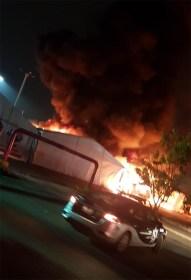 incendio expo moroleon-600px-4