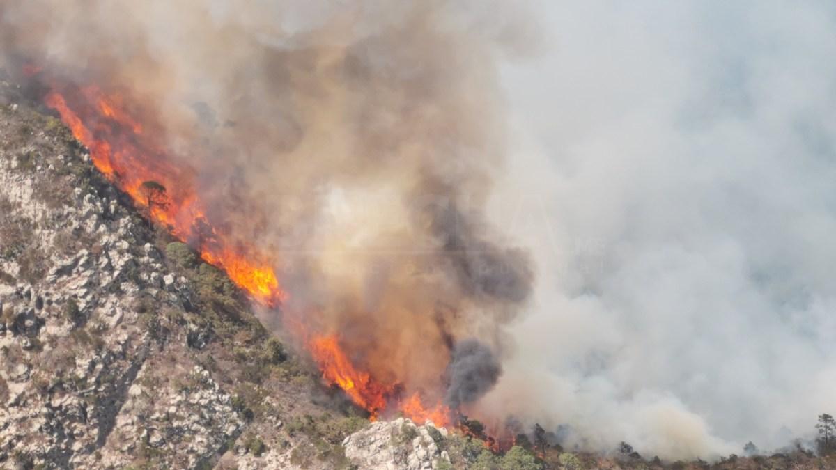 Cinco Incendios Activos en SLP