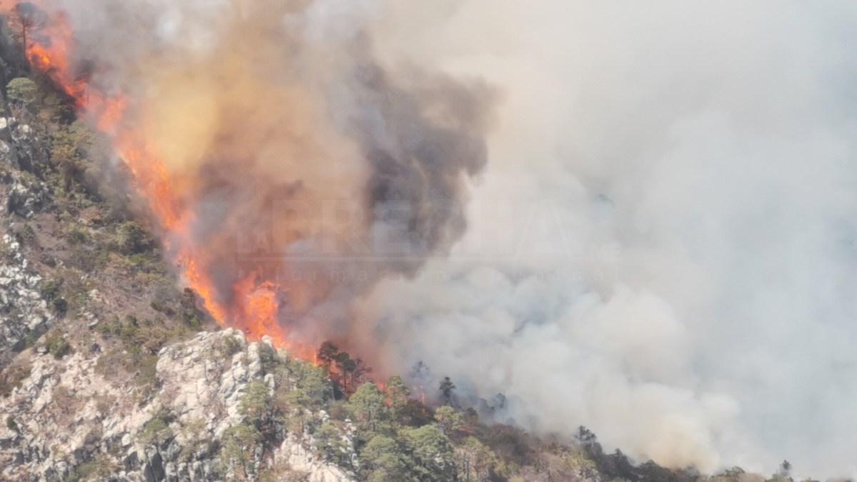 Seis Incendios Activos en San Luis: Alejandro Leal (Galería y Video)