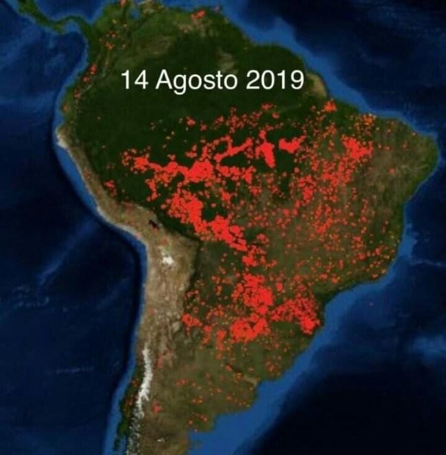 amazonas-