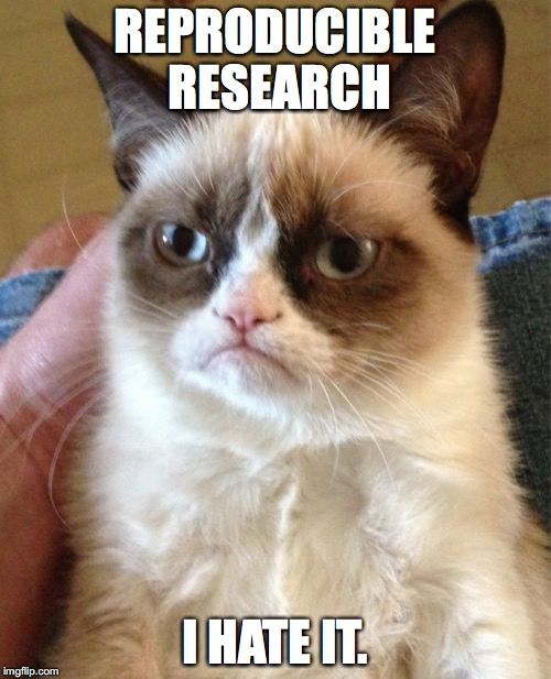 Grumpy Cat does not care about reproducibility