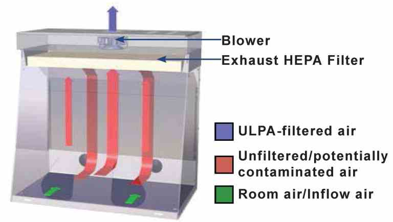 The Powder Weighing Fume Hood