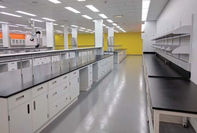 Lab Design Contact Us