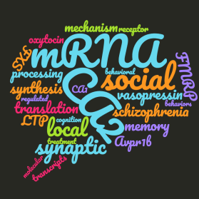 Wordcloud of a recent research statement