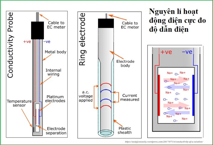 Nguyên lí hoạt động của điện cực đo độ dẫn điện