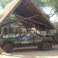 Kapama Southern Camp: Evening Game Drive