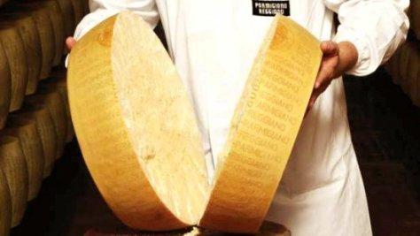 Rueda de Queso Parmigiano Reggiano