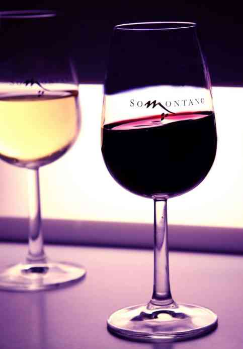 vinos do somontano 03 1
