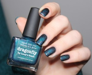 dragonfly-picture polish-scaled gradient-rainbow in space (5)