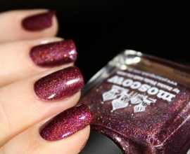 picture polish-moscow (4)